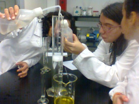 clube_ciencia 8